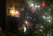 Christmas / The holiday season with all the joys.