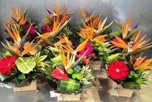 Corporate Arrangements and Function Flowers from Twigs / Corporate flowers arrangments made by Twigs Florist