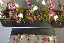 Sarah's Portfolio / Some of the creative works done by our floral assistant Sarah.