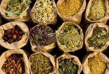 Aromatherapy, Herbs & Oils / Aromatherapy, Healing Herbs & Oils