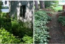 Before and After / These are Before and Afters from our recent projects.