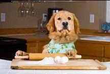 Recipe & Cooking Videos
