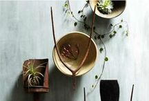 Atrium / All about indoor plants! Tropicals, Succulents, Epiphytes, Terrariums, Cool growing techniques, Unusual species, Botanical Art, Plant Room Decor and Indoor plant spaces. / by Anna Emelia