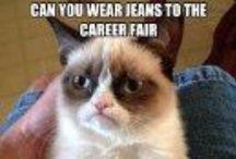 Job Fair Tips / by Drury Career Planning & Development