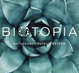 """BIOTOPIA / Erscheinungsbild für das Museum der Zukunft / Mit dem wegweisenden Namen BIOTOPIA, einem lebendigen Logo und dem aktivierenden Claim """"Explore Life"""" erfindet sich das Museum Mensch und Natur völlig neu. Durch Betonung des """"O"""" verweist der Schriftzug auf das Wesen des Lebens an sich. Das BIOTOPIA Brand Design macht die Neuerfindung eines Museums erlebbar, das Bürger zu aktiven Forscher werden lässt und das Wissenschaftlern als Leuchtturm dient – bereits ein halbes Jahrzehnt vor Eröffnung."""