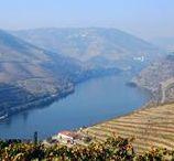 The Alto Douro / A visit to the Douro River Valley