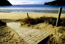 Locations in Northland, New Zealand / Northland is renowned for its breathtaking beaches and no matter where you are, you're never more than 40 km from the coast.