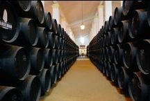The Sherry Triangle / A visit to Andalucia's Sherry Triangle