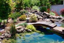 Garten / Garten, Gestaltung, Pflanzen, Kleingarten, Teich