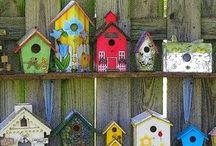 bird feeding and houses