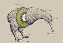 Creative Kiwi / by Honor Stephenson