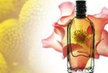 Parfum ETRO / ETRO profumi