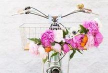Frühling / Springtime / Hier findest du Inspiration rund um das Thema Frühling. Geschenkideen dürfen auch hier nicht fehlen.