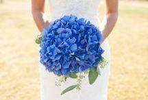 Casamento / Decoração azul royal