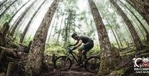 Mountain Bike Photos / Mountain bike photos of trails, action, and scenery including Singletracks featured Photo of the Day