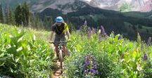 Best Mountain Bike Trails / Best mountain bike trails around the world including singletrack, resort riding, downhill, enduro, fat biking, and scenic mountain biking trails.