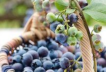 Fruit / soorten fruit / by Patricia Bruijn