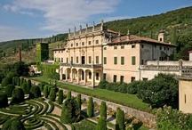 Giardino / Tutto quello che c'è da sapere sul giardinaggio. Consigli utili per la cura del giardino. Grandi giardini: giardini d'inverno, giardini pensili, tetti verdi, giardini storici. I più bei giardini in Italia e nel Mondo