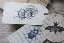 Bugs & Insects / Bug / Insect Thermies give a whole new meaning to having bed bugs! Snuggle up with a new 'bed bug' heat pack!