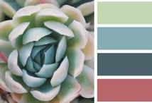 Colour palette / For web design for graphic design