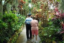 Programs: Adult Day Services / The Stepping Stones Adult Day Services programs provides enriching and life-changing programs to adults with developmental disabilities in Cincinnati,