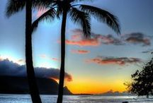 Tropical paradise sunsets