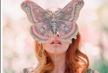 Insects / by Eglantine .