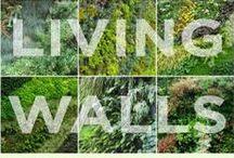 Green wall & facade / Vertical Gardening - Living walls - Green facades -Ideas for building a vertical garden