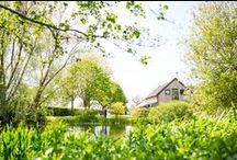 The Granary Barns / The Granary Barns are beautiful 18th century Suffolk flint barns.  They are set in the most beautiful Suffolk countryside surrounded by tranquil farmland and permanent pasture.