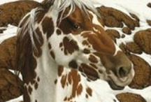 Beautiful Horses / by Kimberly Moreau