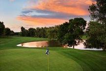 Golf Courses In Memory Of Bob / by Marjoria Wilkins