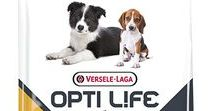 Versele-Laga Products / Products by Versele-Laga Feed for your pets and animals #YourBestChoice