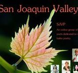 San Joaquin Valley Poets- Tanka, Haiku, Haibun, Poetry established by Jet Keene. / A board to feature online our local poets who write modern tanka, haiku, senryu, and haibun. The group was founded by Jet Keene .  Special thanks to member  Karen McClintock for her work formatting member's pins for Pinterest.