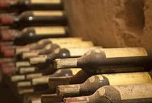 Wines, Vines, Cellars & Spirits / by ANTONINO