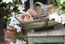 gardening / by Yoshiko Ohkuni