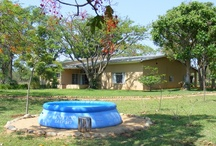 Askari - Our home in the bush / The Askari house is set in the heart of the 14,000 ha Pidwa Wilderness Reserve. Wild animals including impala herds, baboon troops, elephant, lion, zebra, wildebeest and giraffe are regular visitors to the fence
