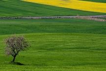 Puglia è Natura