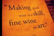 Wine Tasting / Vineyards