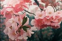 Raoul de Longpre / Beautiful flower paintings by Raoul de Longpre and other artists.