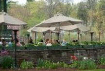 The Cafe  / The Café is open Tuesday - Sunday year round in beautiful Elizabeth Park.  Eclectic and comfortable, serving delicious cuisine in a tranquil setting.