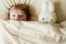 Cuccioli / Babies