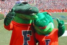 Funny Sports Team Mascots / The best team mascots in the NCAA, NFL, MLB, NBA and more!