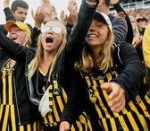 Iowa Hawkeye Pride / Everything you need to get hyped for game day with the Iowa Hawkeyes like game day apparel ideas and fan signs. Go Hawks!
