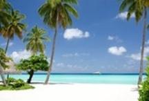 Malediven allgemein / Die schönsten Hotels auf den Malediven - zum Träumen, Tauchen, Entspannen...