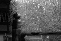 Oh! It's raining!!