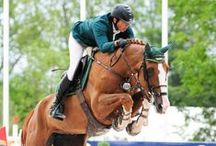 EQUISTA Equestrian SPORT / www.equista.pl with passion for all that is equestrian