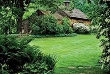 Y Ranch