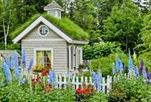 Home in Maine  / For over 25 years, Women to Women has had its home in Maine. To those of you who have never been to this great state: Welcome to Vacationland.