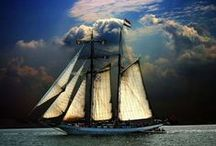Tall Ships / by Charlene Ullock