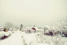 Wintertime / by Leila Chen